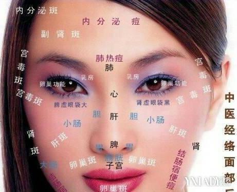 【图】脸长痘痘是什么原因 脸部各区域长痘细分析