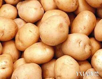 """土豆的营养价值_土豆号称""""地下苹果""""营养成分超其他蔬果"""
