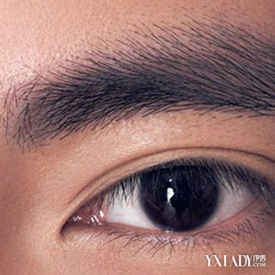 【图】揭秘男士眉毛的画法技巧 多个步骤教你画