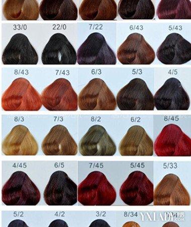 色板颜色大图头发欣赏 为你揭开染色板上的奥秘