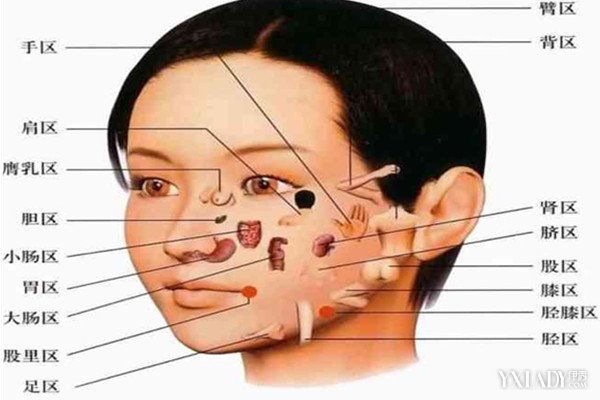 男人鼻梁有痣是什么含义 揭秘男人面部痣的含义图片
