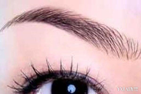 【图】学画眉毛在纸上画眉形图片欣赏