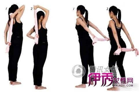 服装背部设计图
