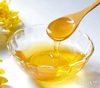 蜂蜜水减肥法 五天减十五斤不是梦