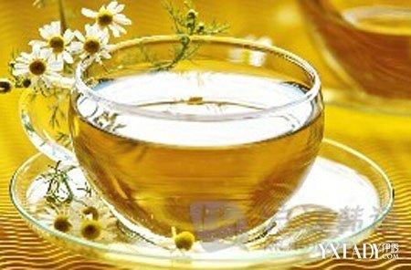 柿子叶茶的功效_柿子叶茶柿子叶功效与作用中药方剂全一中药