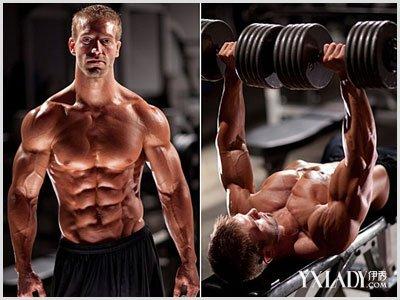 锻炼胸肌腹肌的方法