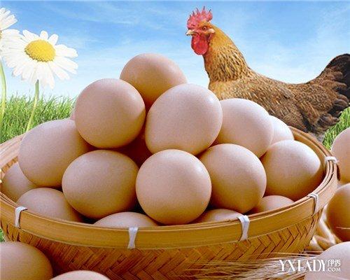 【图】减肥时可以吃鸡蛋羹吗 专家揭秘减肥期
