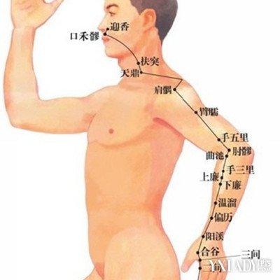 为何会引起手臂经络不畅 手臂经络不畅原因和疗养方法