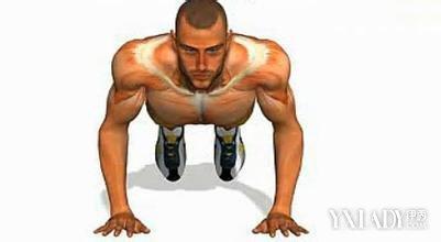 【图】练胸肌最好的方法是什么 教你练出更发