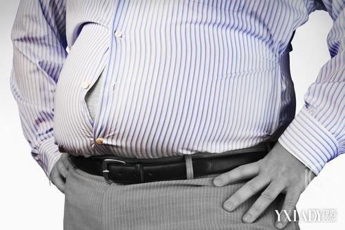 人体真实脂肪图片 你知道它们的真面目吗