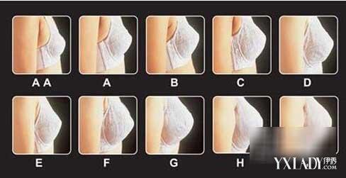 【图】abcd罩杯大小示意图 胸围罩杯怎么算买对文胸