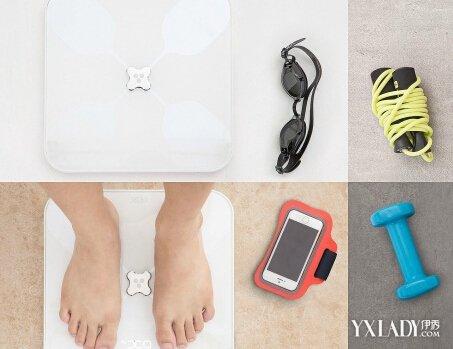 【图】体脂率计算器怎么计算? 3个技巧帮你完