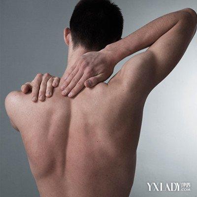 【图】欧美肌肉男壁纸欣赏