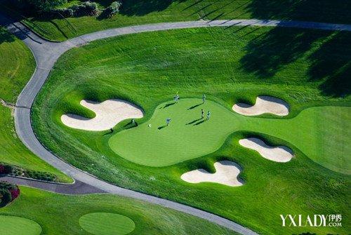 室内高尔夫-运动场所设计标准