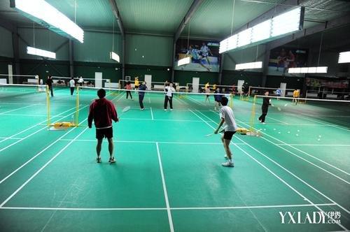 【图】羽毛球单打规则介绍 单双打的那些注意