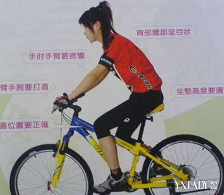 山地车正确骑行姿势详解 三个方面让你更好地驰骋
