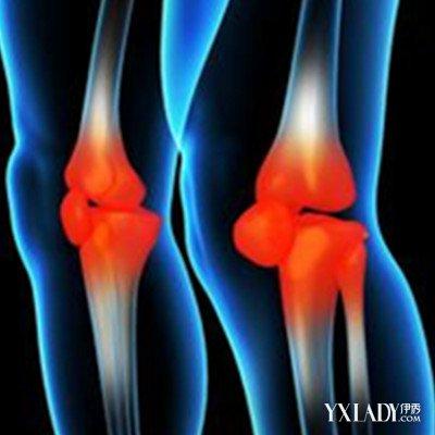 膝关节解剖结构图欣赏 带你走进生理的世界