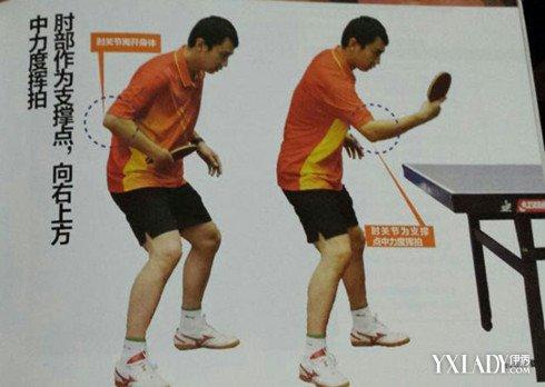 【图】乒乓球横拍明了新手简单教法到爸爸也v横拍吧大全吉塔胸图片