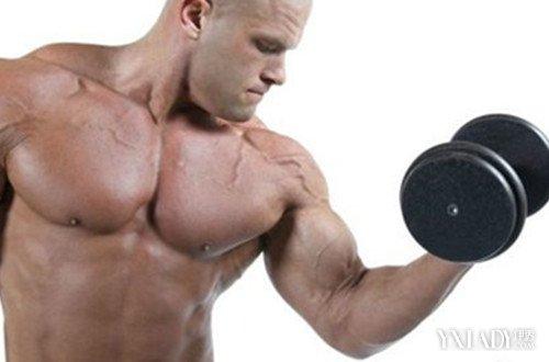 【图】哑铃锻炼腹肌方法图解
