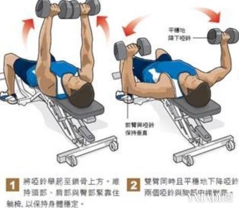 【图】哑铃练胸肌步骤图解