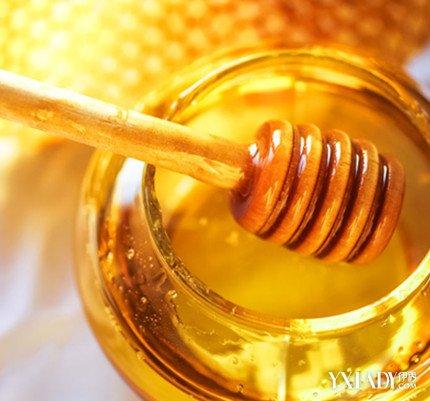 【图】用蜂蜜水减肥法三天瘦10斤 赶紧来看看