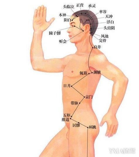 【图】人体穴位图解说明