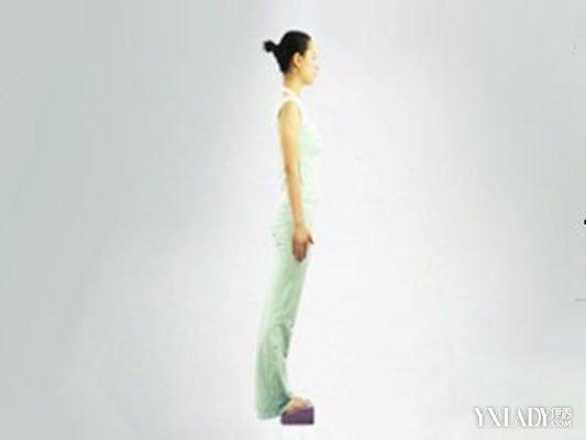 【图】瘦腿瑜伽动作图解8个瑜伽动动教你快速燃脂v瘦腿手机软件图片