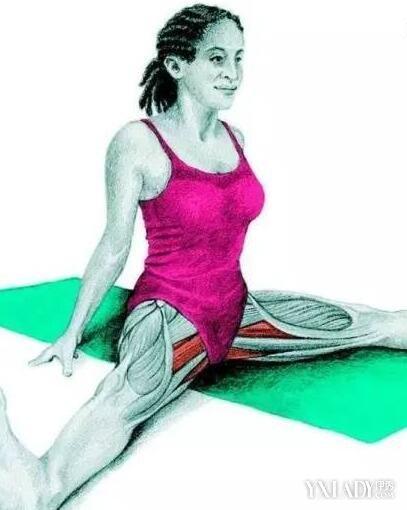 【图】髂腰肌拉伸方法有哪些? 髂腰肌拉伸瘦身