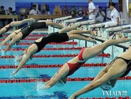 【圖】游泳入水動作要領有哪些圖片
