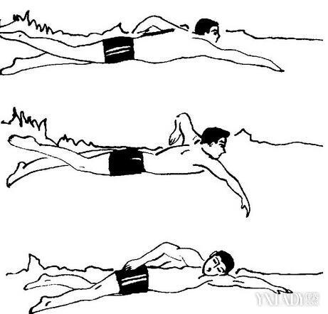 【图】自由泳的动作要领图解 动作呼吸技巧