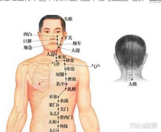 揭秘女性背部经络图 哪些经络你还不了解吗
