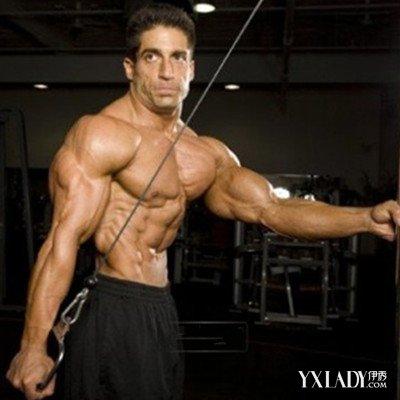 【图】肱三头肌锻炼图解展示