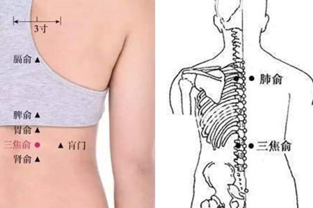背部穴位位置按摩手法简介 家庭常用养生之道