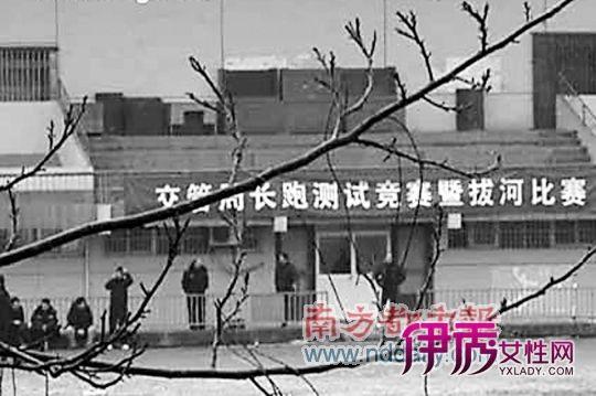 【图】交管局_北京交管局违章查询_交管局违