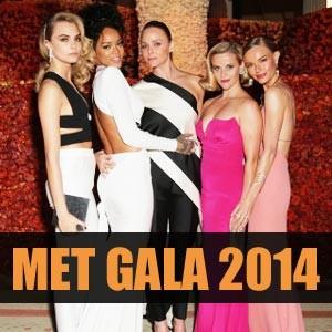 关于Met Gala 2014