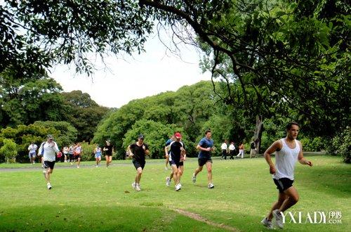 跑步减肥法