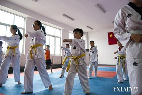 【图】跆拳道基本功步骤图片展示 7大基本步骤