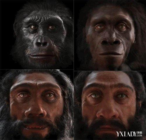 人类脸部进化史由搏击竞争推动 揭一千年后人类模样