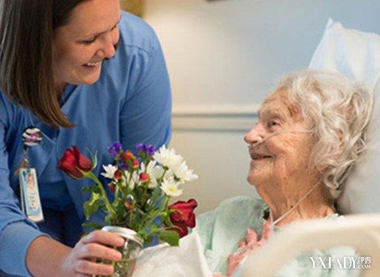 【图】一般看望病人送什么花束好呢其中又有哪些需要禁忌的地方